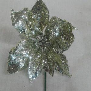 Flor Poinsetia Champan