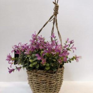 Planta Flor Rosada