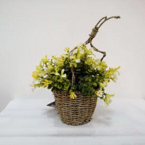 Planta flor amarilla