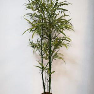 Bamboo 4 tallos