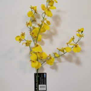 Flor orquídea amarilla