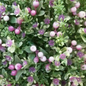Panel frutos rosa